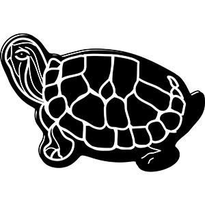 TURTLE1 - Indoor NoteKeeper&#0153 Magnet